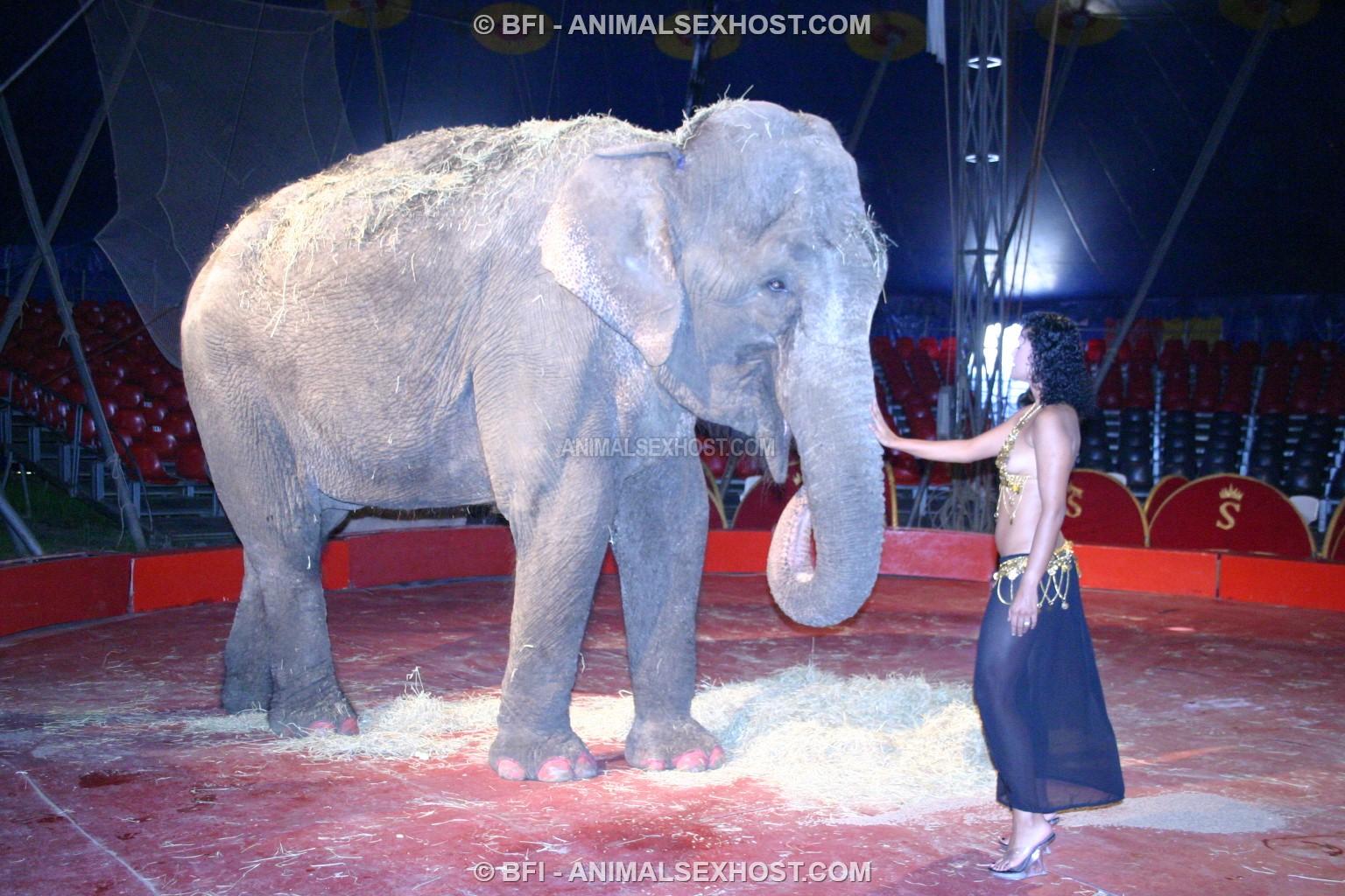 Adriana Morena Has Sex With An Elephant  Free Animalsex -9363