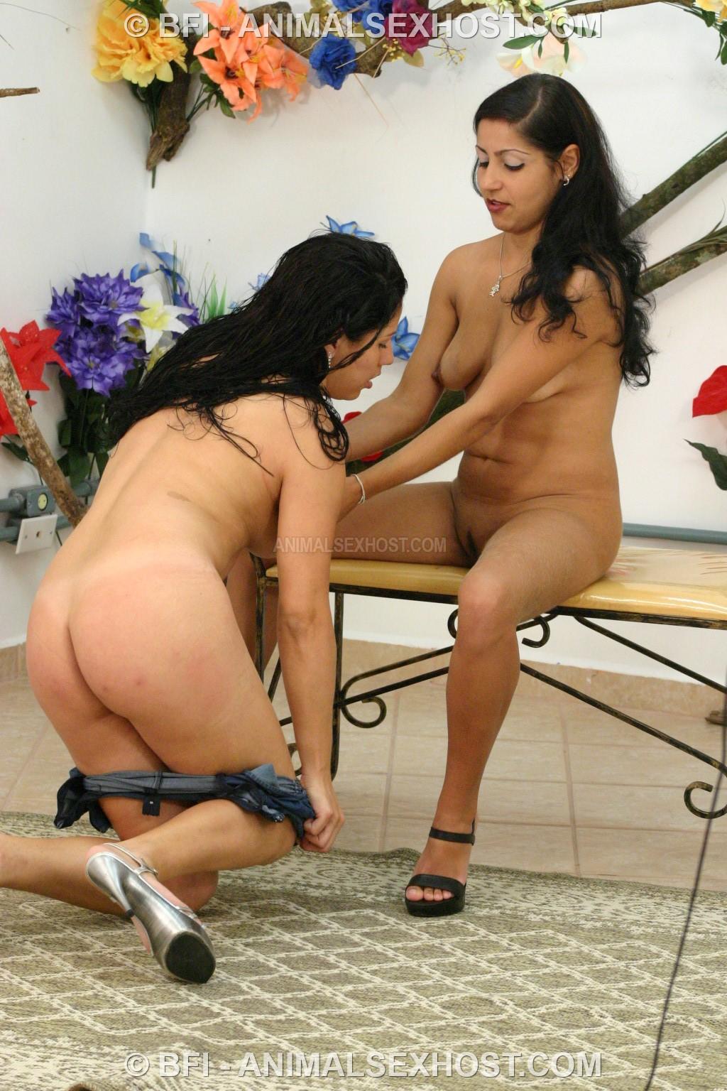 Dogsex Show Monica, Kelly And Kimberly  Free Animalsex -4599