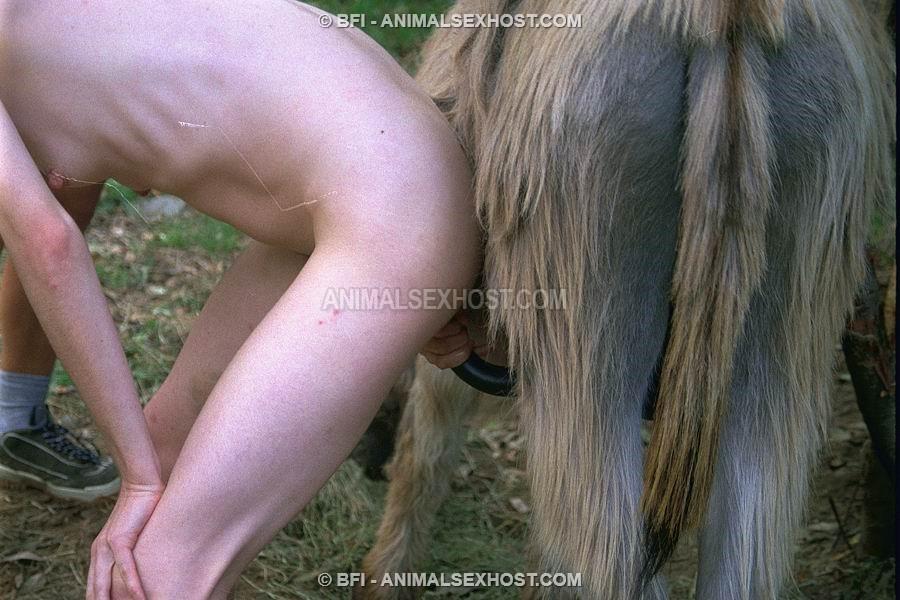 Fuck Wife, Fuck Donkey  Free Animalsex Pictures-2403