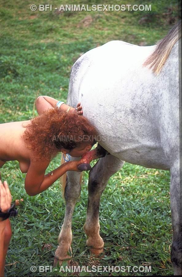 horsesex