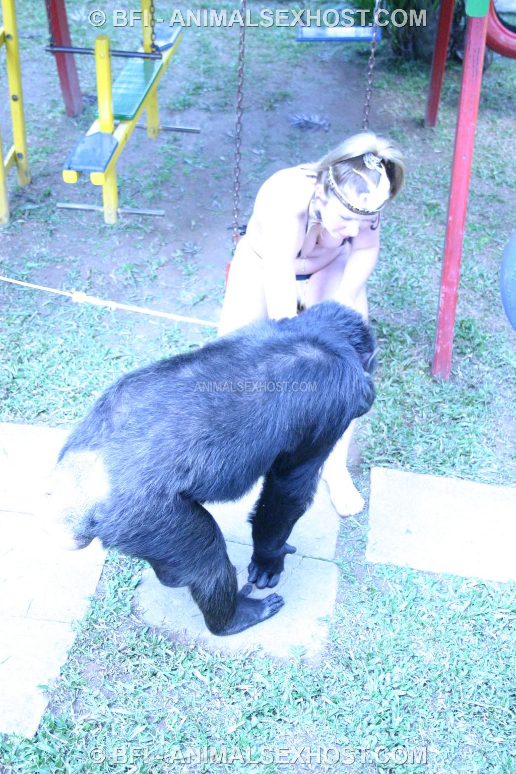 Uedyjja Chimpanzee Porn